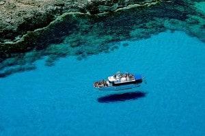 cipro-protaras.jpg 3