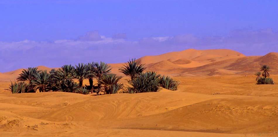 marocco dune dell'erg chebbi
