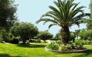 grecia trikorfo beach hotel 6