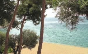 grecia trikorfo beach hotel 8