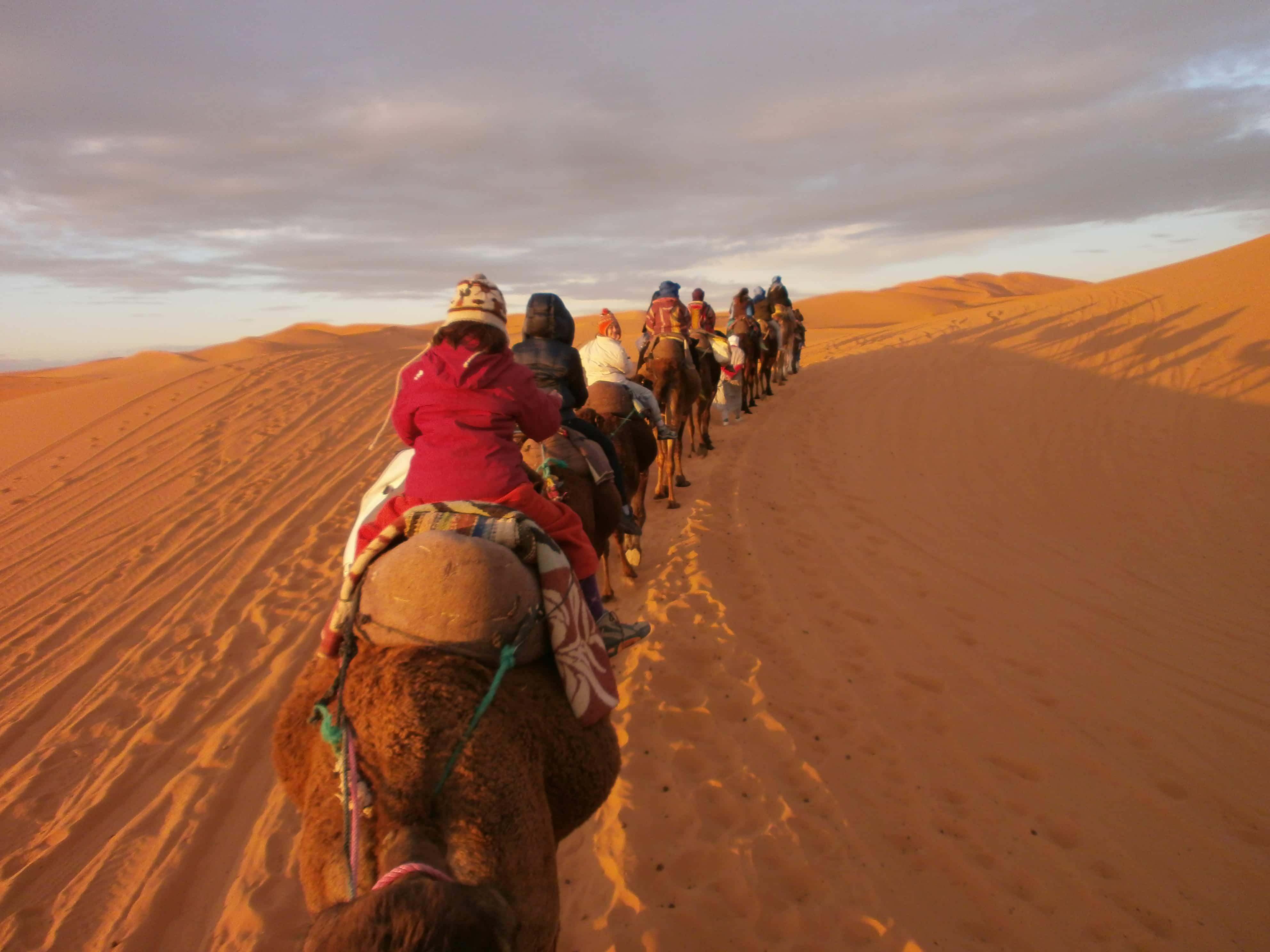 Mehari viaggio  Attraversando il deserto del Sahara