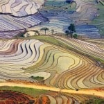 N046.Terraced fields in Y Ty, Lao Cai