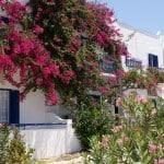 Pension askas Amorgos