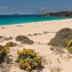 playa_de_ las conchas La_graciosa
